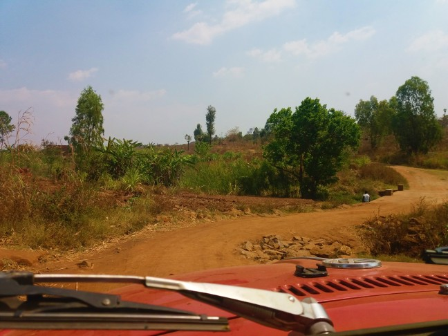 Not the road from Zomba to Blantyre!